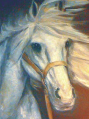 Obraz projektanta Beaty Owczarek - koń